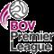 Premier League play-off