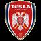 FK Nikola Tesla