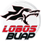 Lobos de la BUAP Puebla