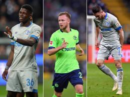 Schalker Offensiv-Transfers im Winter nicht ausgeschlossen