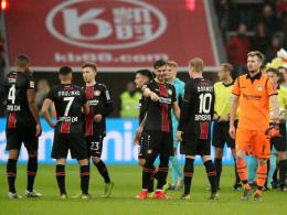 Sturz vom Zaun: Leverkusen-Fan erleidet Kopfverletzung