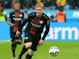 Rolfes über Brandt: