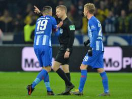 Berufung zurückgezogen: Ibisevic-Sperre bleibt bestehen