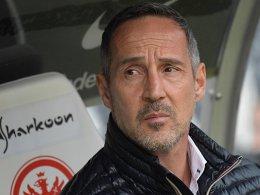 Schalke wird für Hütter