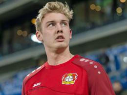 Brandt: Darum spielen wir nicht in der Champions League
