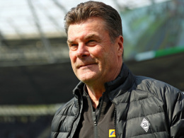 Sportdirektor? Hecking: