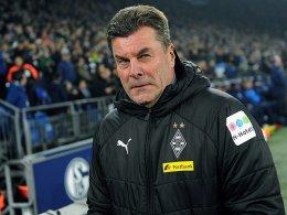 Hecking ist der Top-Kandidat auf Schalke