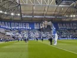 Live Konferenz Bundesliga 13 Spieltag Saison 2019 20