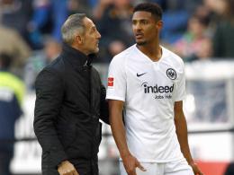 Frankfurt-Coach Hütter: