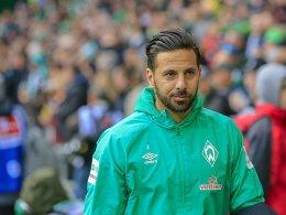 Baumann zu Pizarro: