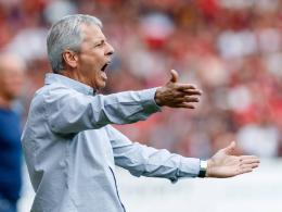 Favre warnt vor Schalke: